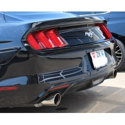 Invidia Auspuffanlage Ford Mustang  2.3 L EcoBoost