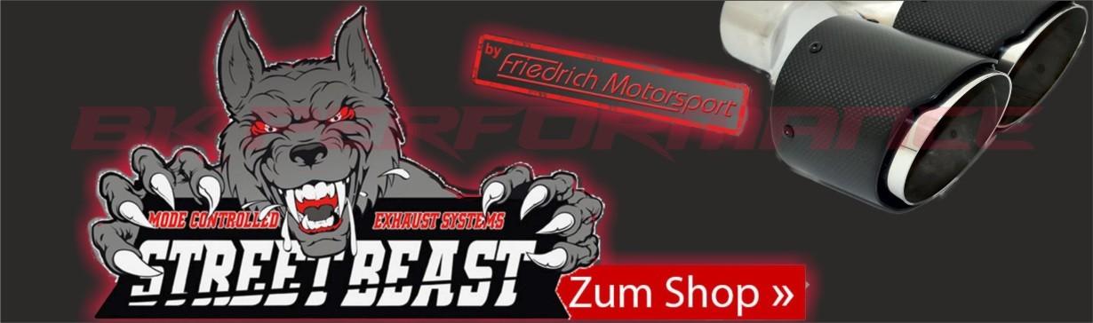 Friedrich / Streetbeast Auspuffanlagen & Zubehör